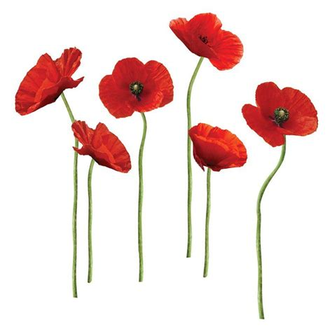 Poppies At Play Peel And Stick Giant Wall Decals  Hayneedle.
