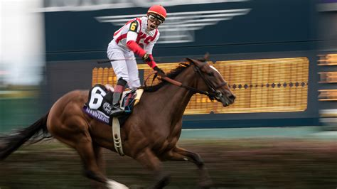 Pro Horse Racing Picks Best Bets Trainer Angles Handicapping.