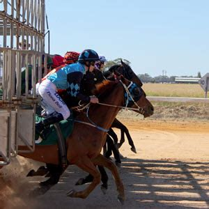 Professional Horse Racing Tips - Mine Creek Battlefield.