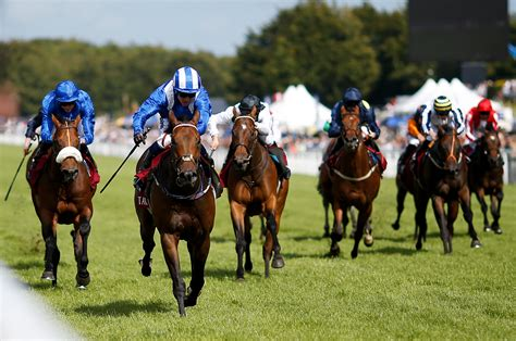 Profitable Horse Racing Tips - Professional Horse Racing Tips.
