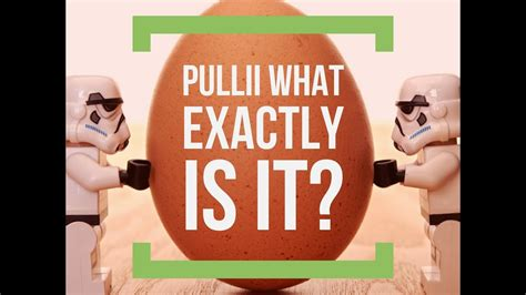 @ Pullii Review Part I What Is Pullii And How Can It Help Me .