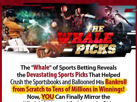 @ Recover The Whale Won 30 Million Betting On Sports  500 .