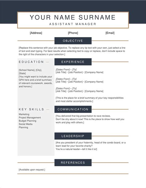 resume template copy and paste copy and paste resume templates