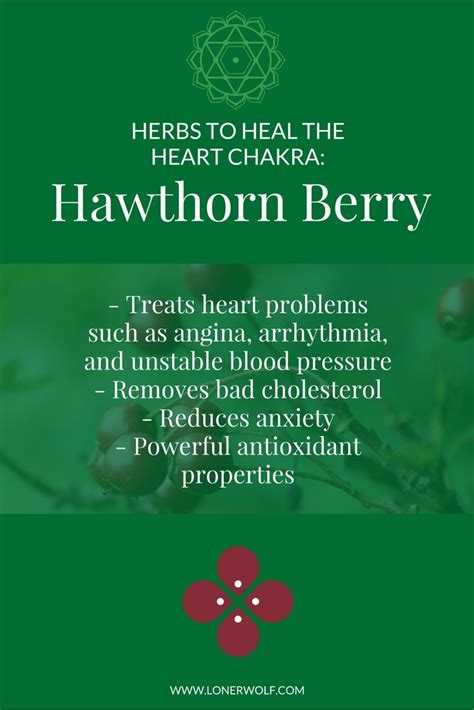 [click]soul-Medicine-The-Heart-Of-Healing Reviews Rating .