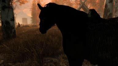 @ The Optimumsleep Protocol - Reviewdaily Net.