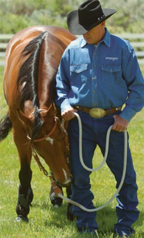 Teaching Your Horse Not To Bite - Expert Advice On Horse Care And.