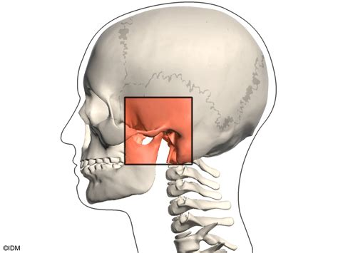Temporomandibular Joint Disorders (tmj & Tmd): Overview - Webmd.