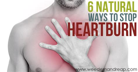 [pdf] The 30 Day Heartburn Solution A 3 Step Nutrition Program .