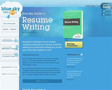 @ The Blue Sky Guide To Resume Writing.