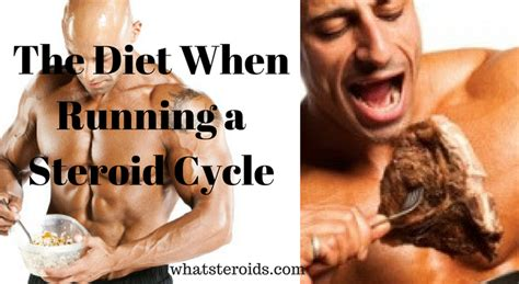 @ The Diet When Running A Steroid Cycle - What Steroids.
