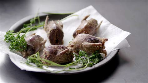 [pdf] The Mourning Dove Processing Cooking Freezing.