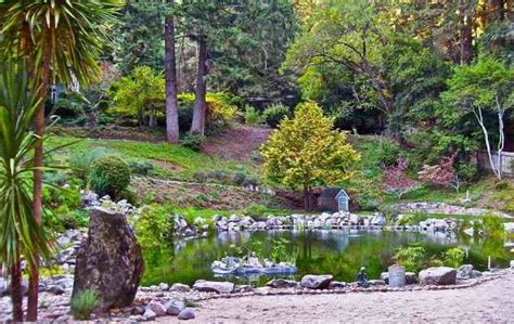 [pdf] The Realtor  S Guide To Selling A Home With A Koi Pond.