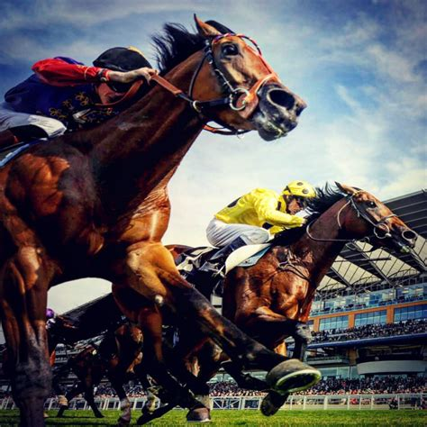 [pdf] Thoroughbred Betting - Horse Racing Tips - Wordpress Com.