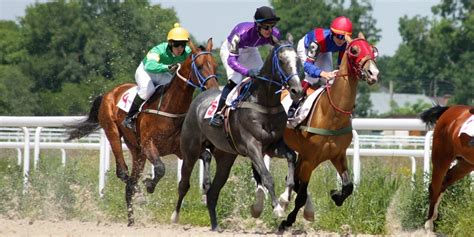 [pdf] Thoroughbred Betting Professional Horse Racing Tipsters .