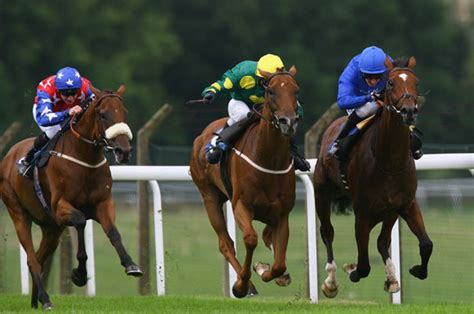 Uk Horse Racing Tips From Betting Tipster Alex Gorrie - Racing View.