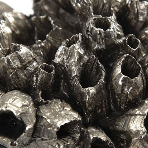 Uttermost Sessile Barnacle 2-Piece Sculpture Set In Silver .