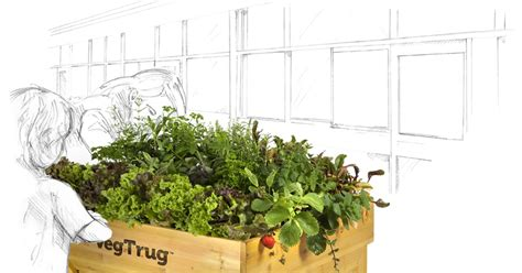 Vegtrug - See What You Can Grow.