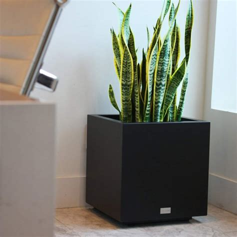 Veradek Metallic Series Cube Planter White Small From .