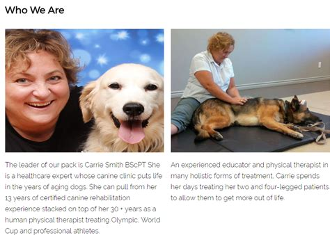 [pdf] Wagging For Life Aging Dog Vitality Course - Limited Time.