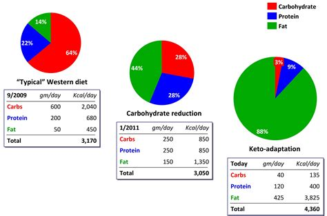 What Is The Average Amount Of Saturated Fat Per Day On Ketogenic Diet