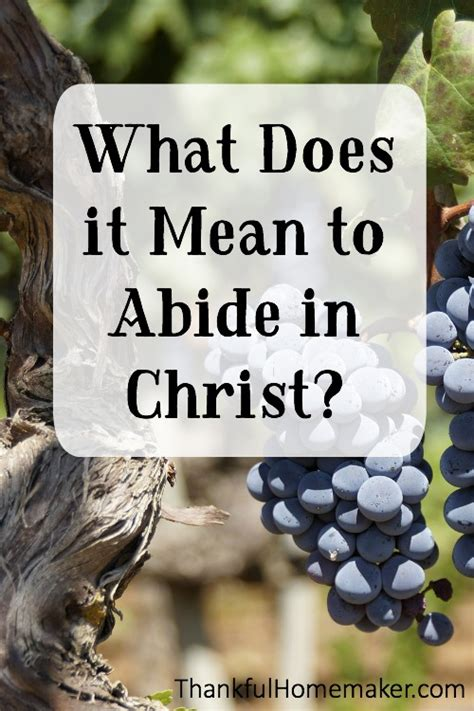 What Is It To Abide In Christ? What Does It Mean To Abide In Christ?.