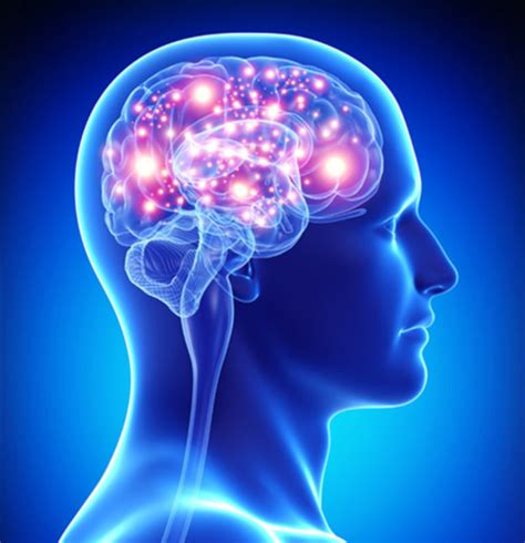 [click]where Can I Neuroactiv6- Top Brain  Energy Support .