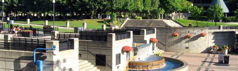 Will Lawyer North York