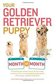 [pdf] Your Golden Retriever Puppy Month By Month Everything You .