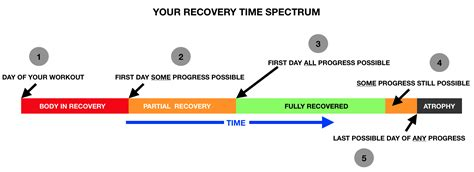Your Recovery Time Spectrum - Power Factor & Static Contraction.