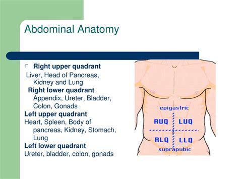 acute abdominal pain approach ppt