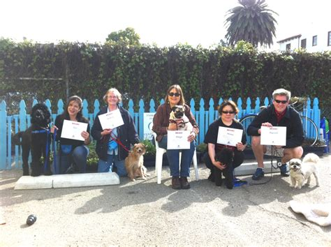 Alameda Dog Training Classes