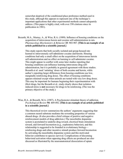 Annotated Bibliography Example For High School