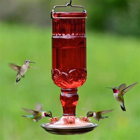 Antique Bottle Hummingbird Feeder