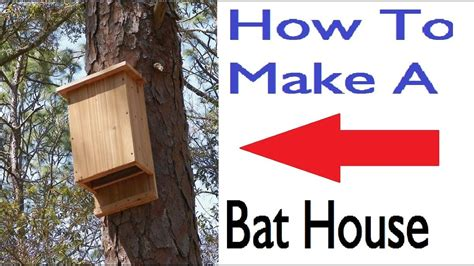 Bat Houses How To Build