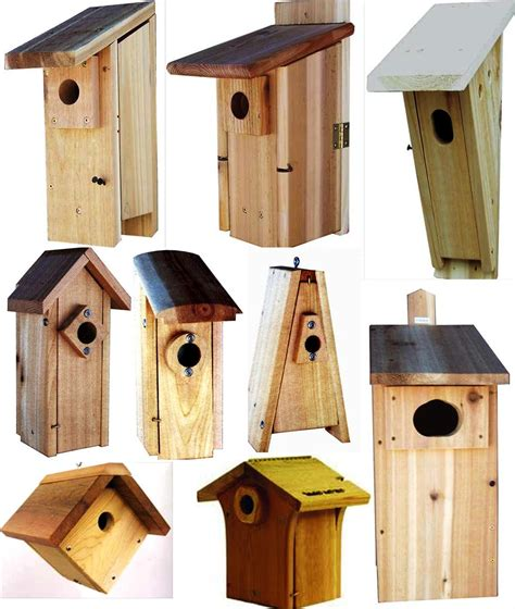 best bird houses for sparrows
