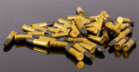 Ammunition Best 22 Lr Ammunition For Ruger 10 22.