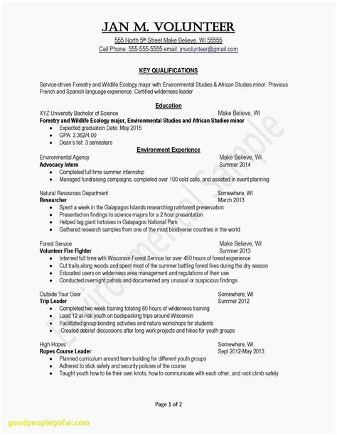 example professional resume sales samples professional resume resume template example resume