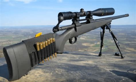 Rifle-Scopes Best Vortext Rifle Scope For 300 Win Mag.