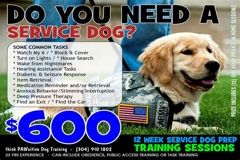 Bipolar Service Dog Training