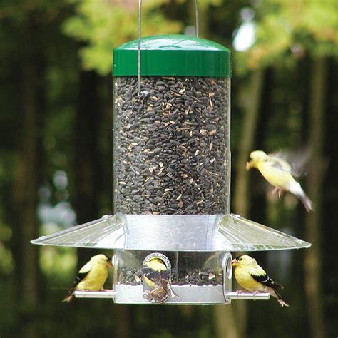 Bird Feeder Lowes