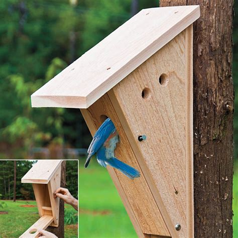bluebird houses nest box