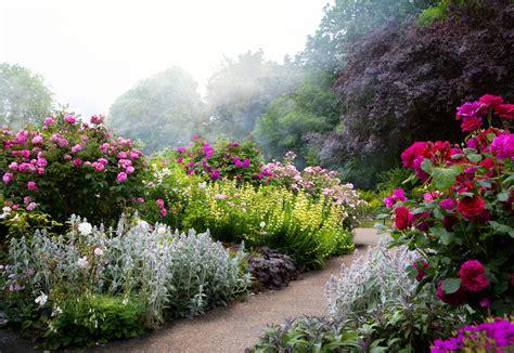 Blumen Englischer Garten