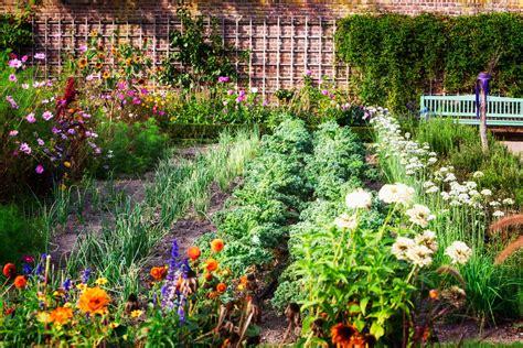 Blumen Zusammen Pflanzen