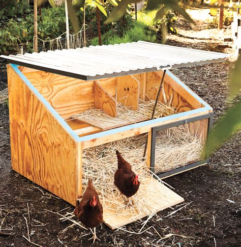 building chicken coops pictures