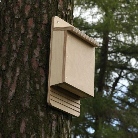 Building Bat Boxes