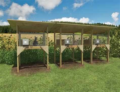 Building Outdoor Rabbit Hutch
