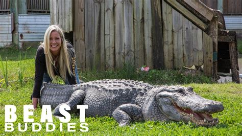 Businesswoman Ditches Career For Giant Gators Beast Buddies