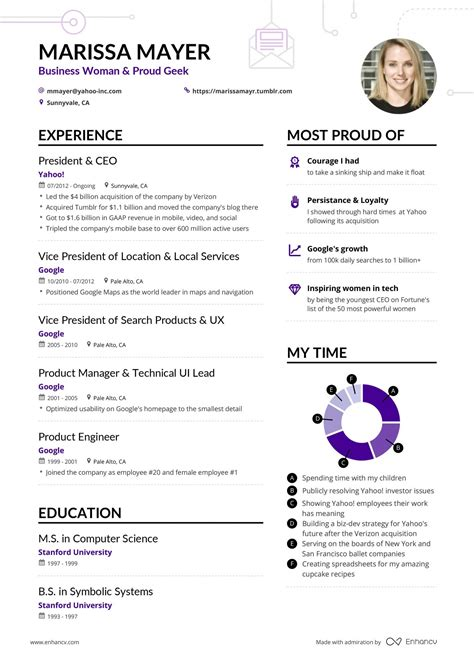 Ceo Resume Samples Doc Ceo Resume Template Chief Executive Officer Cv Example