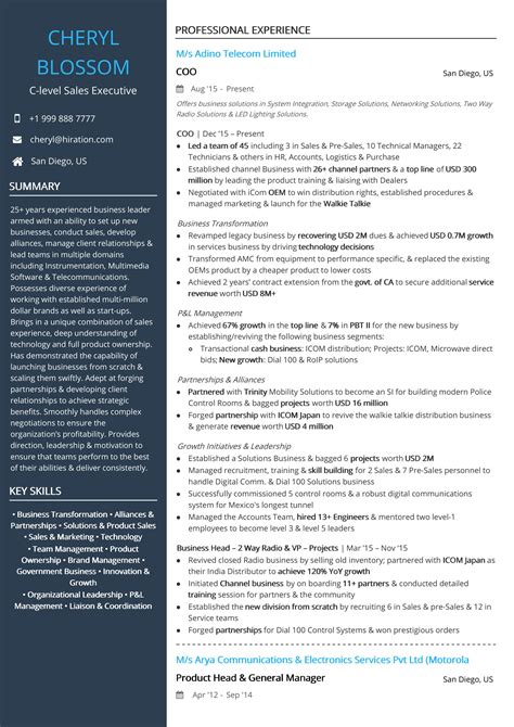 Ceo Resume Samples Doc Resume Sample For A Ceo Distinctive Documents