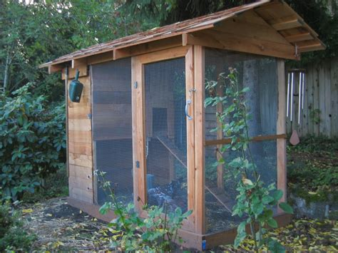 chicken coop building code